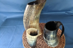pic_drinking-horns_2